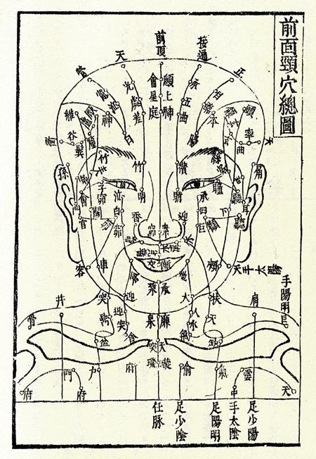 顔面の経穴