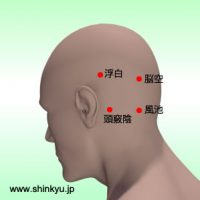 左後頭部の経穴(ツボ)