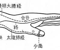 大腸経と肺経